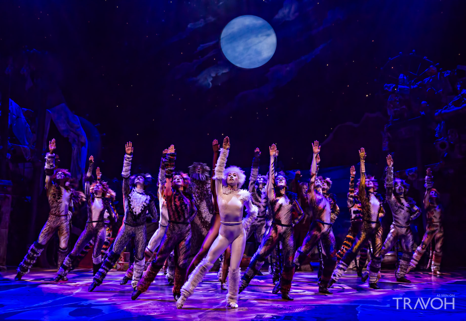 Cats at Neil Simon Theatre - 250 W. 52nd St.