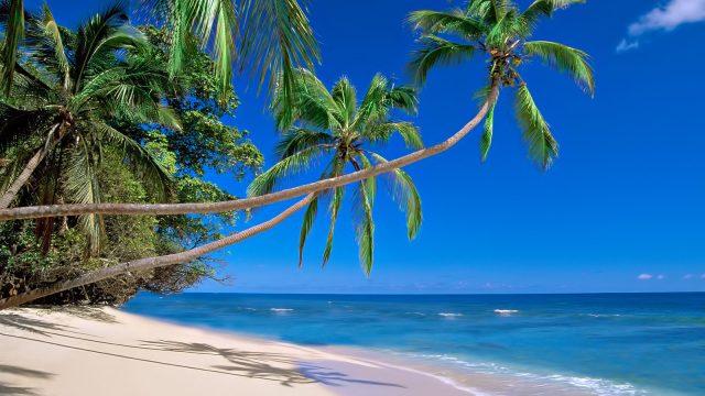 Matana Beach Resort - Exploring 10 of the Top Beach Locations on the Islands of Fiji