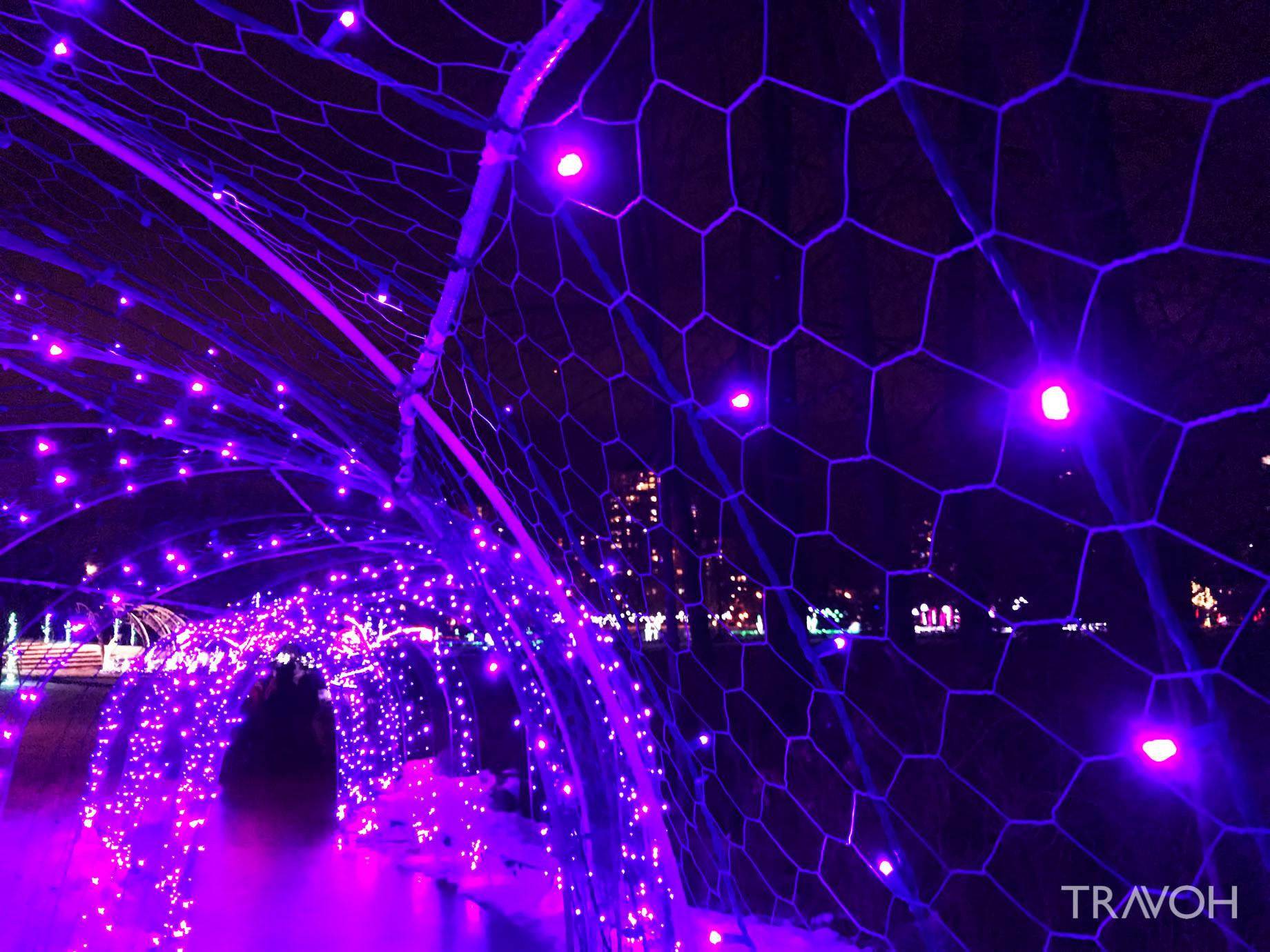 Lafarge Winter Lights Display – Caterpillar – Coquitlam, BC, Canada
