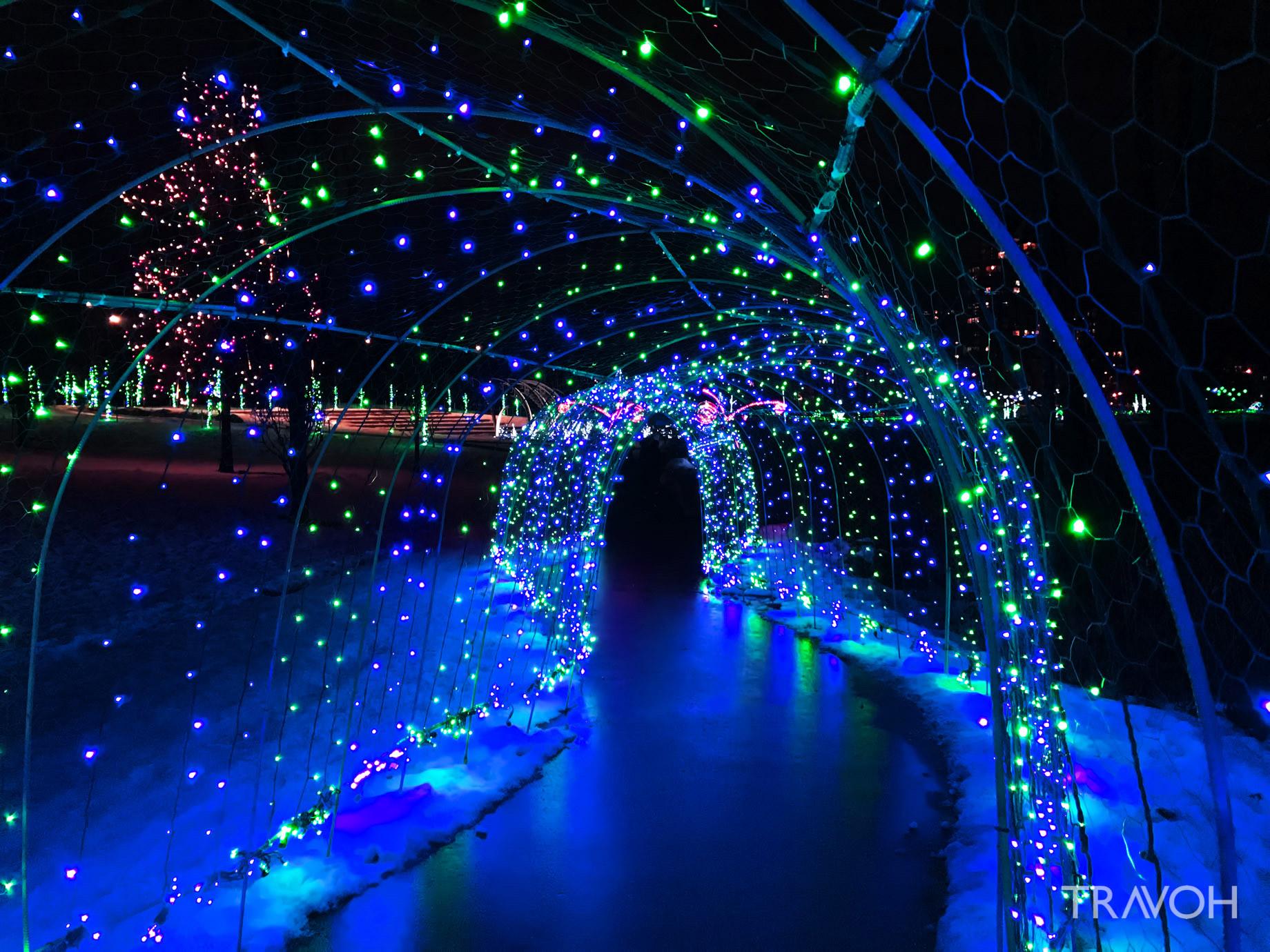 Lafarge Winter Lights Display - Caterpillar - Coquitlam, BC, Canada