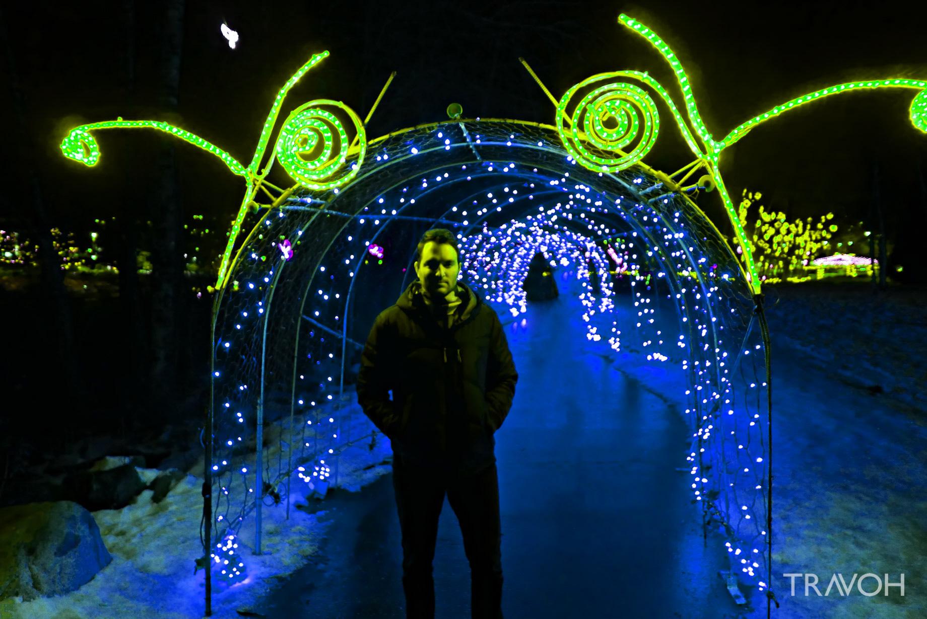 Marcus Anthony - Lafarge Winter Lights Display - Caterpillar - Coquitlam, BC, Canada