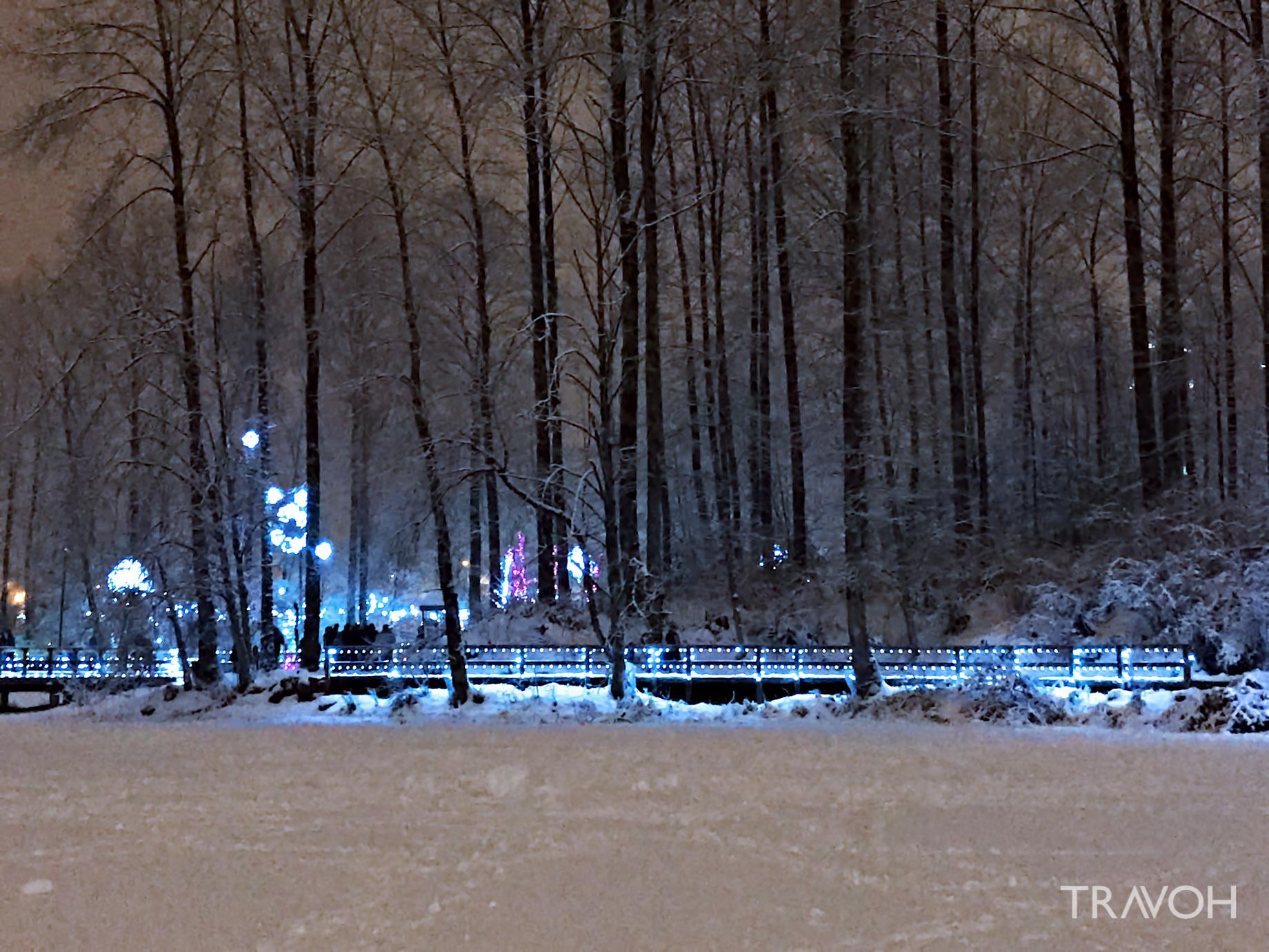 Lafarge Winter Lights Display - Frozen Lake - Coquitlam, BC, Canada