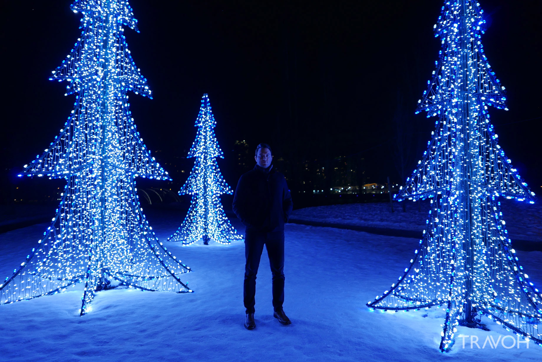 Marcus Anthony - Lafarge Winter Lights Display - Winter Christmas Trees - Coquitlam, BC, Canada