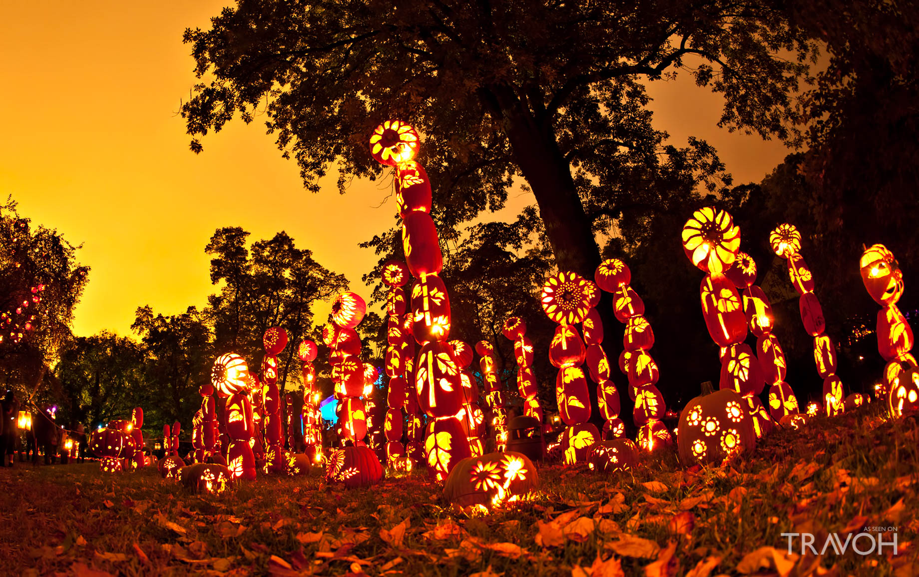 Great Jack O'Lantern Blaze - 525 S Riverside Ave, Croton-on-Hudson, NY, USA