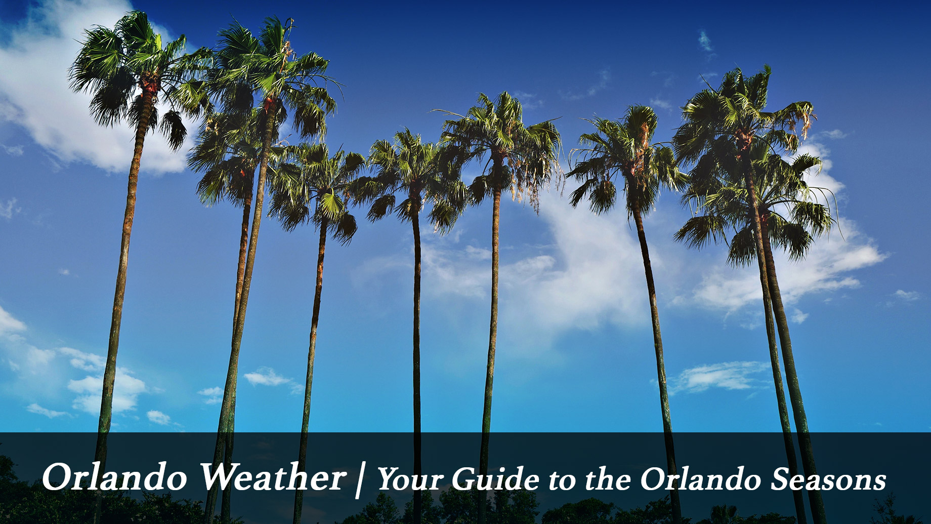 Orlando Weather - Your Guide to the Orlando Seasons