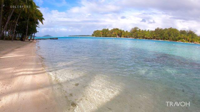 Peaceful Morning, Calm Sea, Palm Trees - Motu Tane Island, Bora Bora, French Polynesia - 4K Travel Video