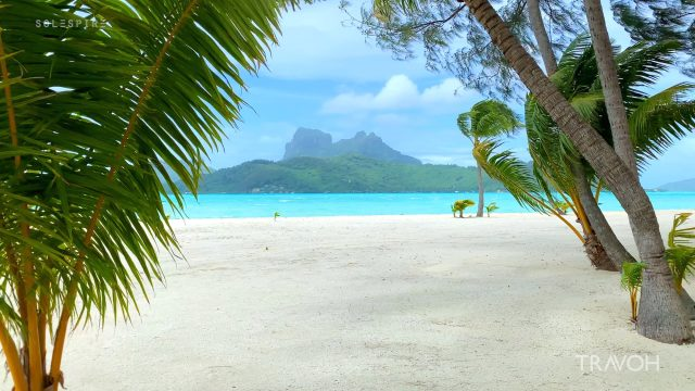 Tropical Windstorm - Natural Sounds - Motu Tane Island - Bora Bora, French Polynesia - 4K Travel Video